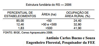 O Novo Código Florestal e a obrigatoriedade da implantação do